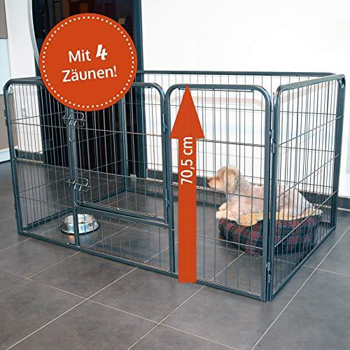 zooprinz erstklassiges Freilaufgehege (Hundezaun) Dog Run - ideal für...