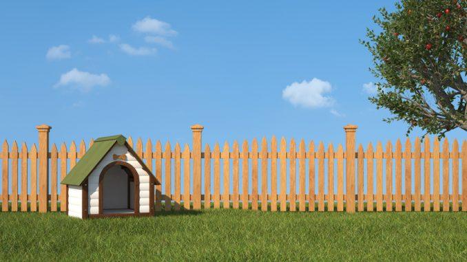 Hundezaun und Gartenzaun