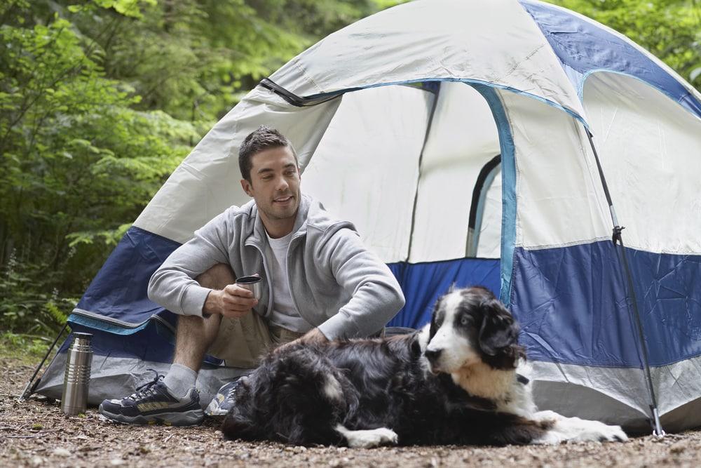Hundezaun für Camping und Wohnmobil