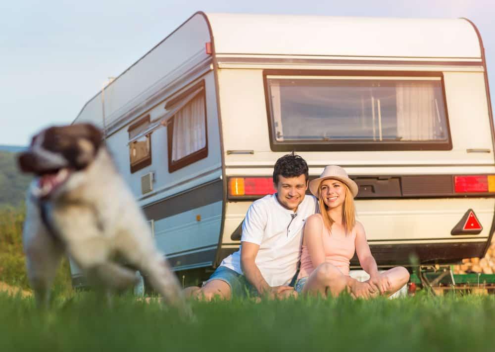 Hundezaun für Camping mit Hund